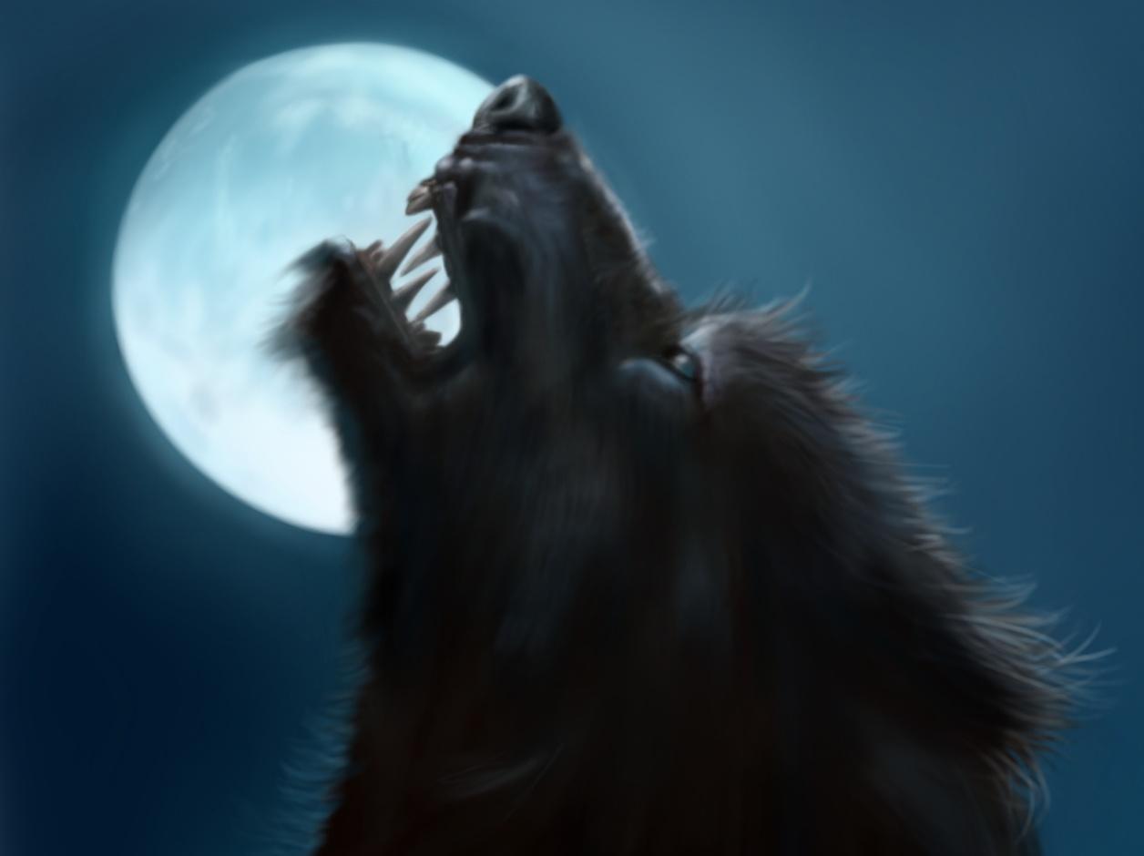 moon-werewolf.jpg
